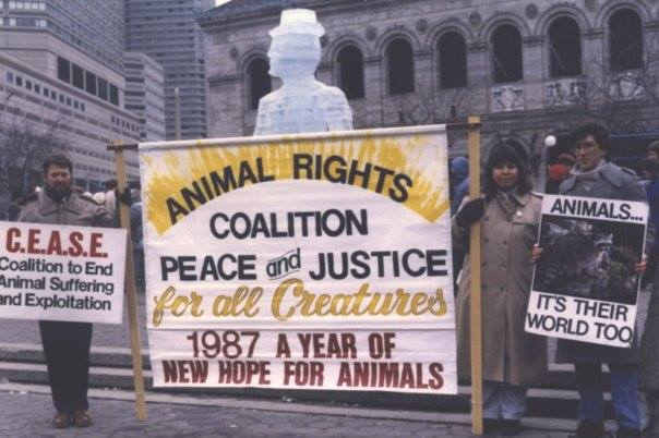 Protestors stand in front of the Boston Public Library holding signs about animal rights