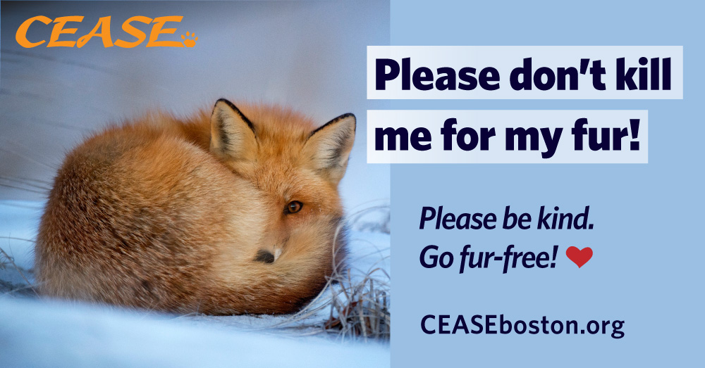 Please Don't Kill Me for My Fur. Please be kind and go fur-free!