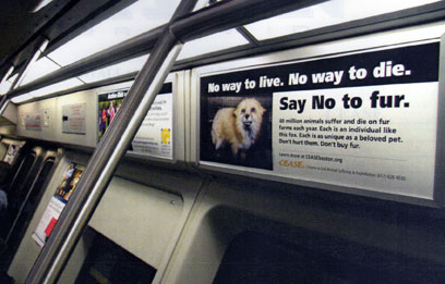 Ad on a subway car shows a fox and Say No to fur.