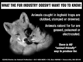 WHAT THE FUR INDUSTRY DOESN'T WANT YOU TO KNOW: Animals caught in leghold traps are clubbed, stomped or drowned. Animals raised for fur are gassed, poisoned or electrocuted. There is no