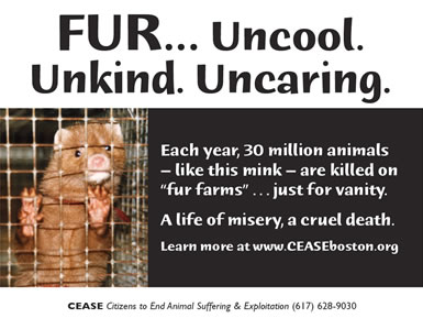 FUR... Uncool. Unkind. Uncaring. Each year, 30 million animals like this mink are killed on fur farms just for vanity. A life of misery, a cruel death.