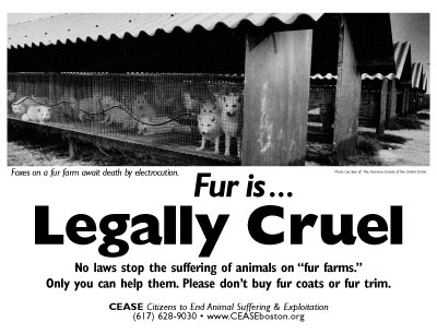 Fur is... Legally Cruel. No laws stop the suffering of animals on fur farms. Only you can help them. Please don't buy fur coats or fur trim.