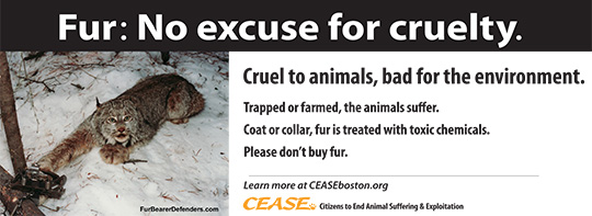 Fur: No excuse for cruelty. Cruel to animals, bad for the environment. Trapped or farmed, the animals suffer. Coat or collar, fur is treated with toxic chemicals. Please don't buy fur.