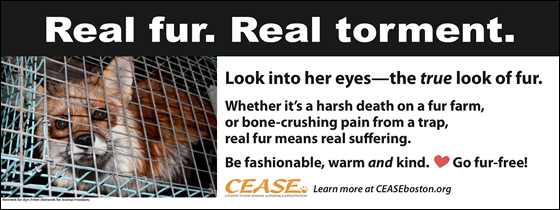 Real fur. Real torment. Look into her eyes—the true look of fur. Whether it's a harsh death on a fur farm, or bone-crushing pain from a trap, real fur means real suffering. Be fashionable, warm and kind. Go fur-free!
