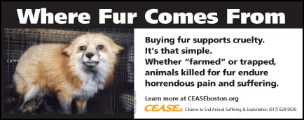 Where Fur Comes From Buying fur supports cruelty. It's that simple. Whether farmed or trapped, animals killed for fur endure horrendous pain and suffering.